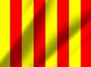 Yellow-red Flag